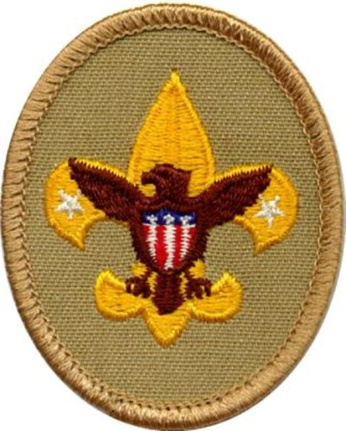 Image result for scout ranks