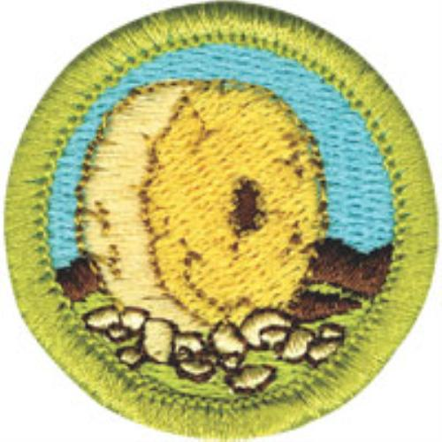 Public Merit Badges Boy Scout Troop 41 Hernando