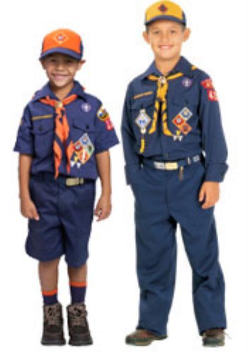 public insignia   cub scout pack 242 stewardson strasburg