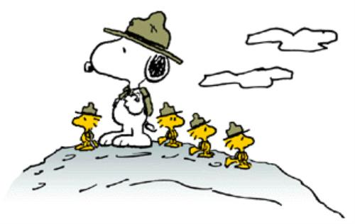 Snoopy Scouts